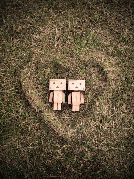 ảnh người gỗ và tình yêu