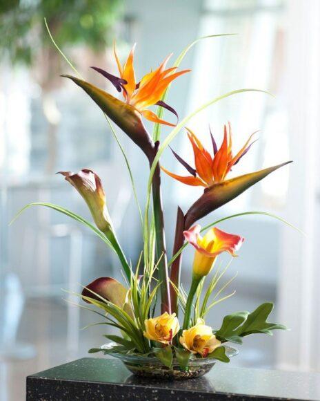 Cắm hoa thiên điểu đẹp
