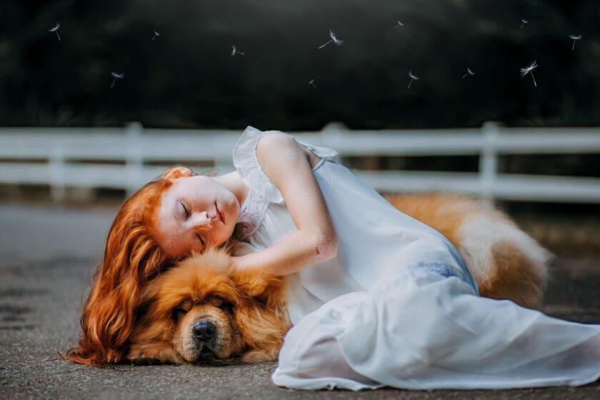 hình ảnh cô bé buồn ngủ say bên cạnh chú chó