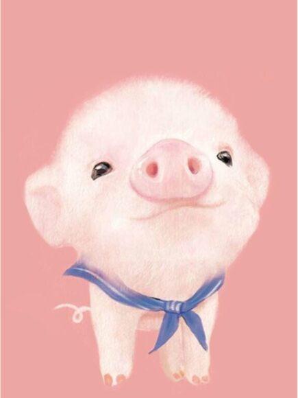 Hình ảnh con lợn đáng yêu