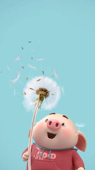 Hình ảnh con lợn và hoa bồ công anh