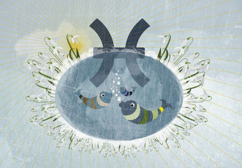 Hình ảnh cung Song Ngư màu xám