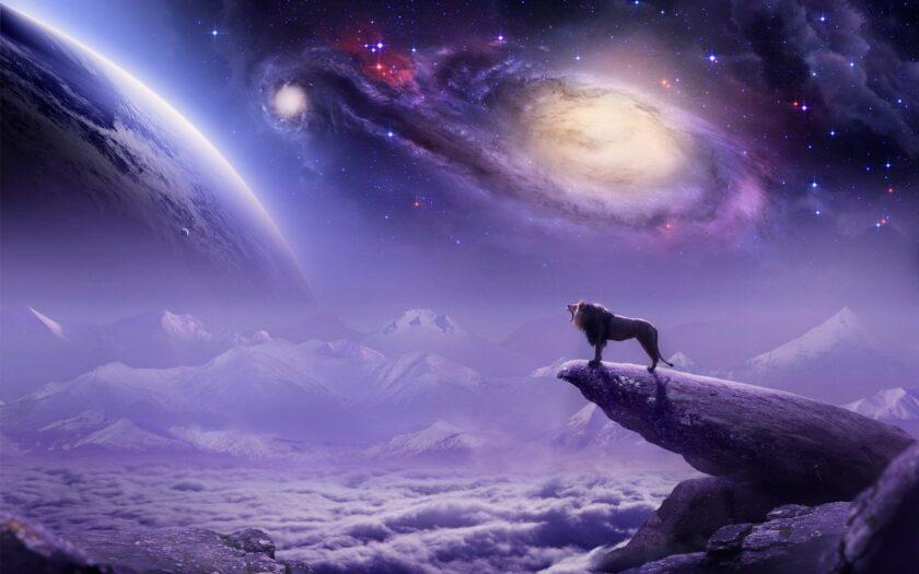 hình ảnh cung sư tử - chú sư tử đơn độc cùng bầu trời đầy sao sáng