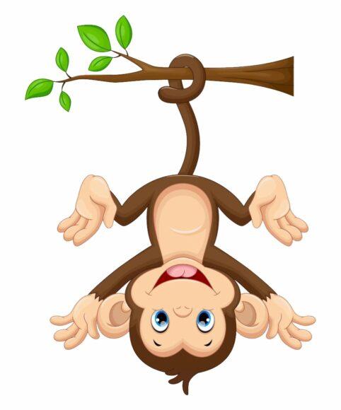 hình ảnh động vật dễ thương chú khỉ hoạt hình