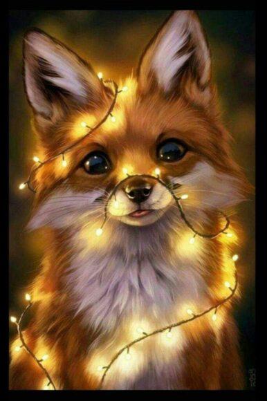 hình ảnh động vật dễ thương con cáo