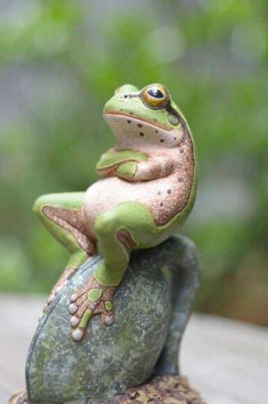 hình ảnh động vật dễ thương về chú ếch