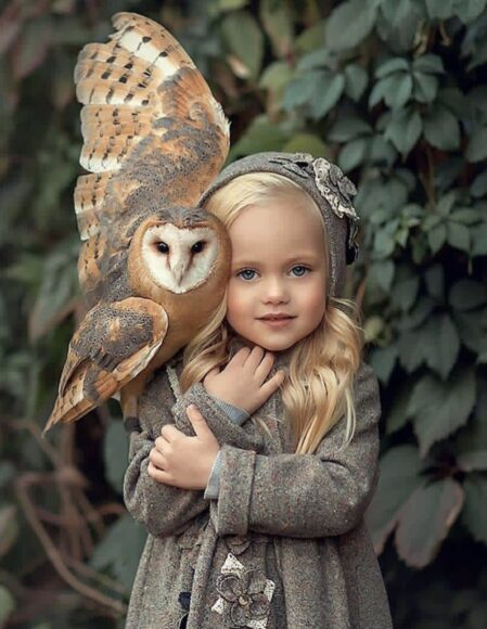 hình ảnh động vật dễ thương về em bé và con chim cú mèo
