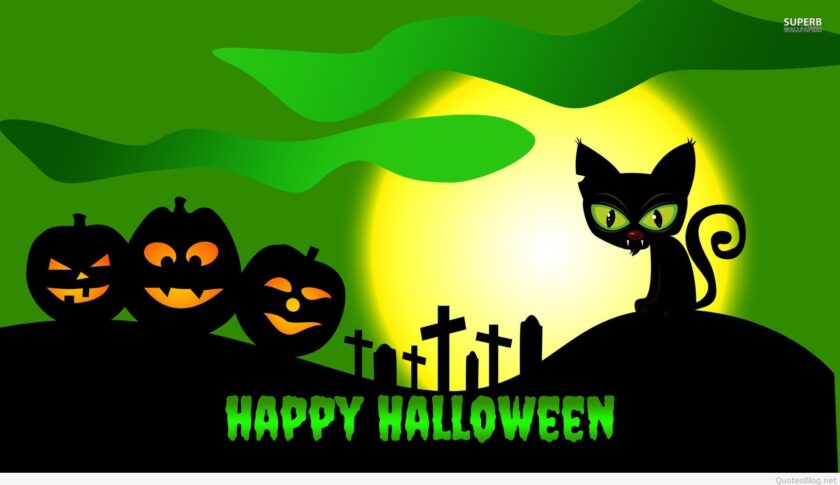 hình ảnh halloween dễ thương về những chú mèo đen
