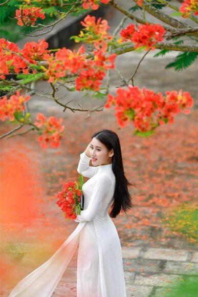 hình ảnh mùa hè hoa phượng và thiếu nữ xinh đẹp
