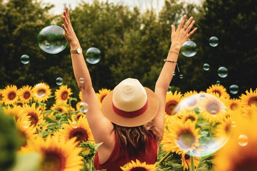 hình ảnh mùa hè vườn hoa hướng dương và cô gái