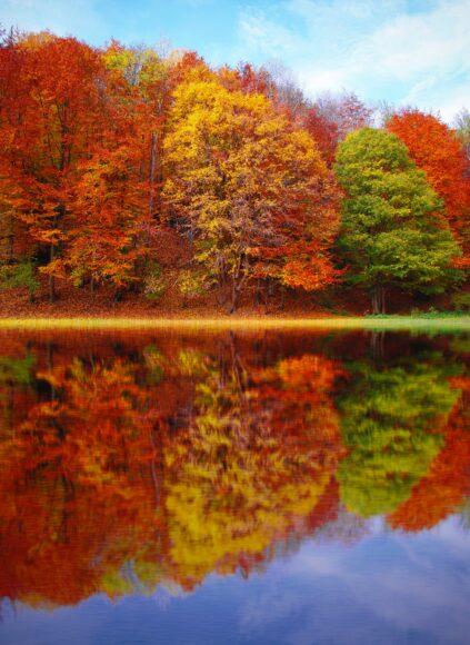 hình ảnh mùa thu phong cảnh