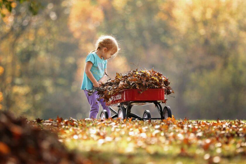 hình ảnh mùa thu và cô bé đáng yêu