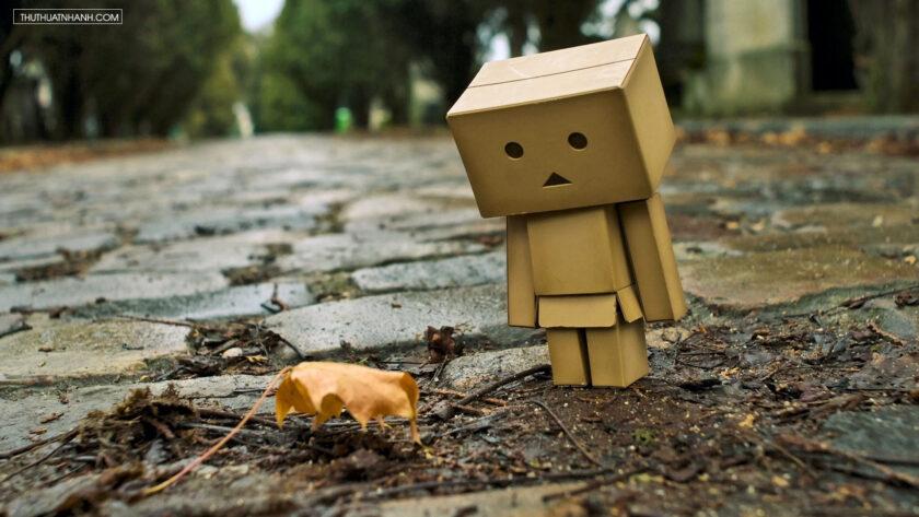 hình ảnh người gỗ danbo buồn