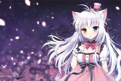 Hình nền anime girl tóc trắng dễ thương