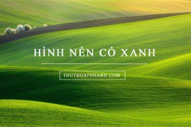 hình nền cỏ xanh