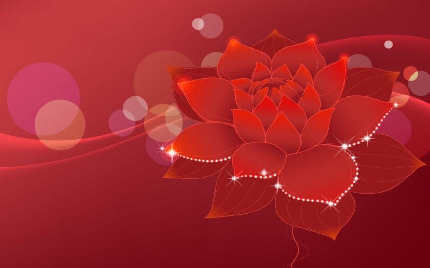 hình nền đỏ đẹp về bông sen