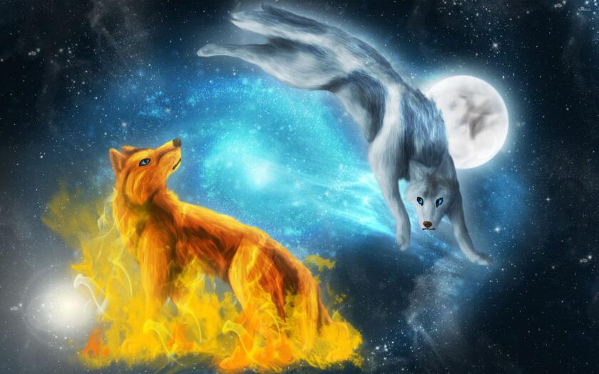 hình nền lửa về con sói