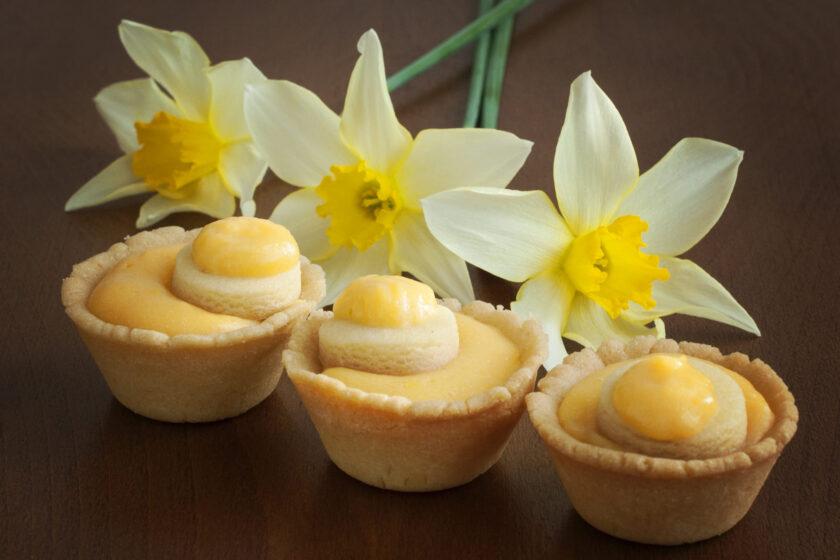 hình nền màu vàng của bánh trứng cùng hoa