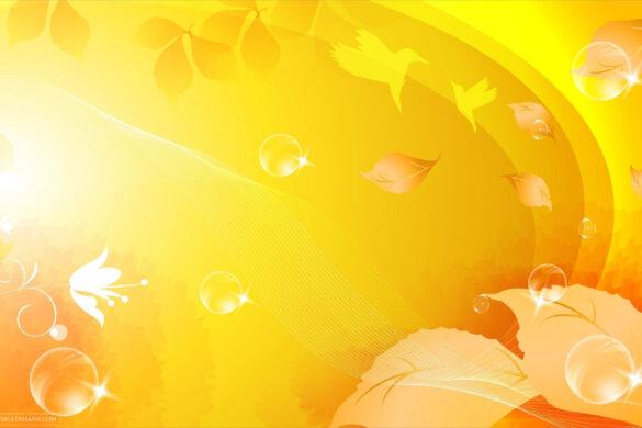 hình nền màu vàng đẹp
