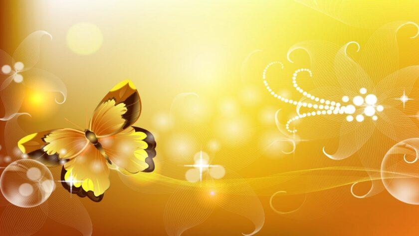 hình nền màu vàng đẹp về chú bướm