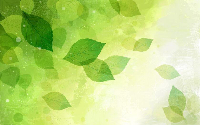hình nền màu xanh lá cây nhạt