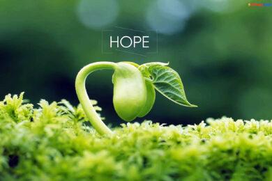 hình ảnh hy vọng
