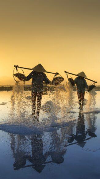 hình ảnh làng quê việt nam trong ánh hoàng hôn