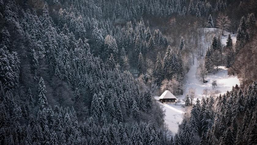 Hình ảnh mùa đông lạnh trên núi cao cùng ngôi nhà cô độc