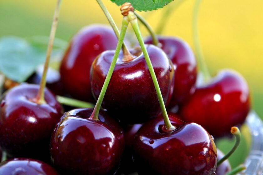Hình ảnh quả cherry đỏ thẫm đẹp