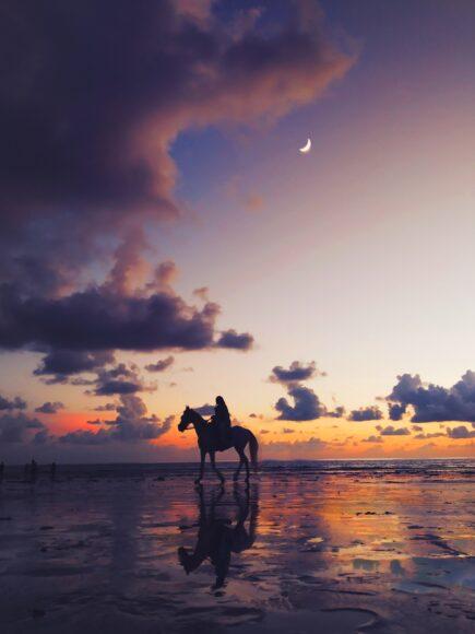hình nền 4k về người đang cưỡi ngựa trên bờ biển