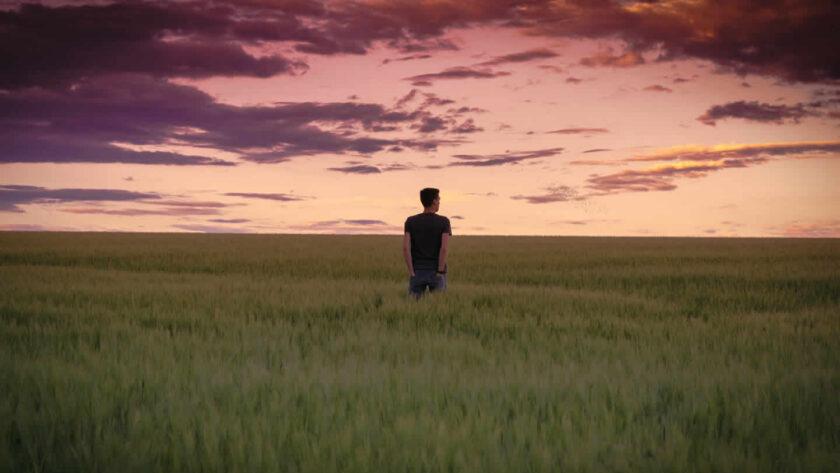 ảnh một người độc thân cô đơn trống trải giữa cánh đồng