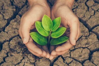 hình ảnh bảo vệ môi trường trước khi quá muộn