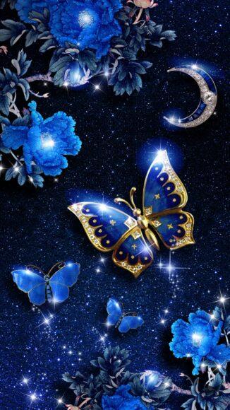 hình ảnh con bướm đẹp bí ẩn, mê hoặc