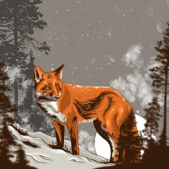 hình ảnh con cáo đỏ trong tranh vẽ