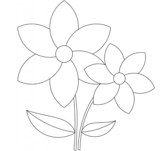 Hình vẽ bông hoa nhiều cánh dành cho bé 3 tuổi tập tô