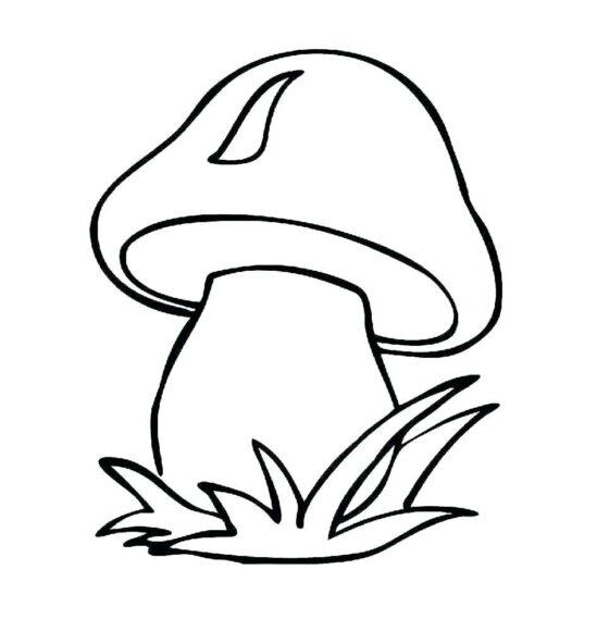 Hình vẽ cây nấm dành cho bé 3 tuổi tập tô