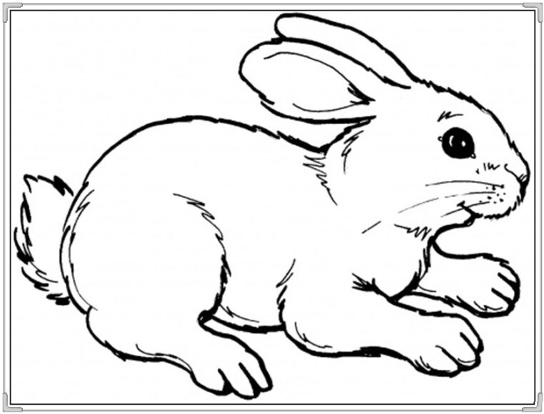 Tranh tô màu cho bé 3 tuổi hình con thỏ