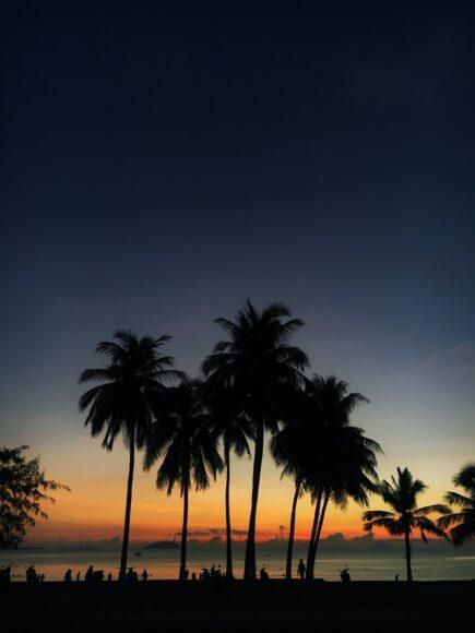 ảnh nha trang bờ biển ban đêm