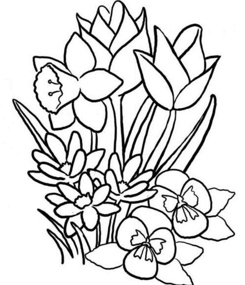 Hình vẽ chưa tô màu vườn hoa