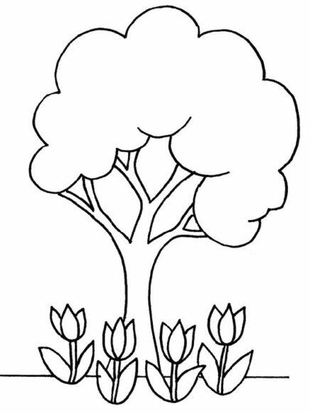 Mẫu vẽ cây xanh cho bé tô màu