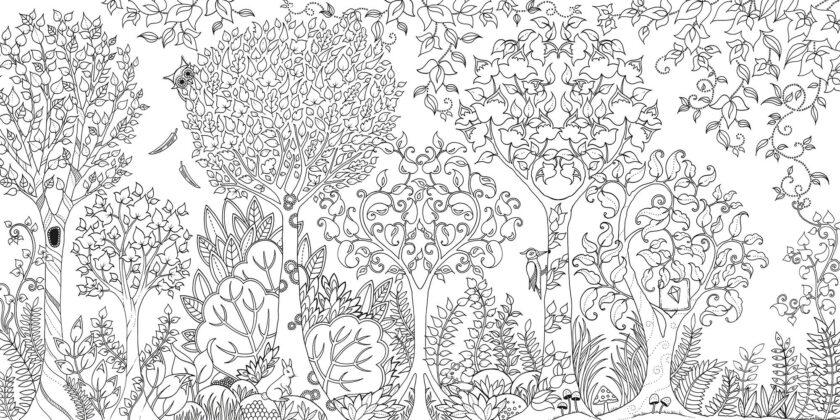 Tranh tô màu cho người lớn khu vườn bí mật