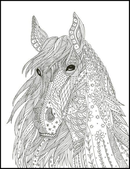 Tranh tô màu người lớn hình mặt ngựa