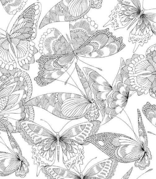 Tranh tô màu người lớn hình những con bướm hoa đẹp
