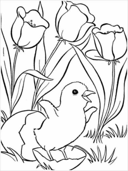 Tranh tô màu vườn hoa và gà con vừa nở