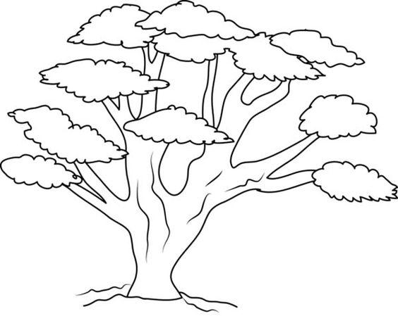 Tranh vẽ đen trắng cây xanh cho bé tô màu